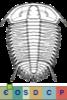 Super-famille Dameselloidea