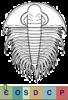 Super-famille Olenelloidea