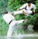 https://i.servimg.com/u/11/01/00/01/th/karate10.jpg