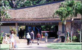 Honolulu zoo Zoo10