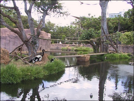 Honolulu zoo Zoo210