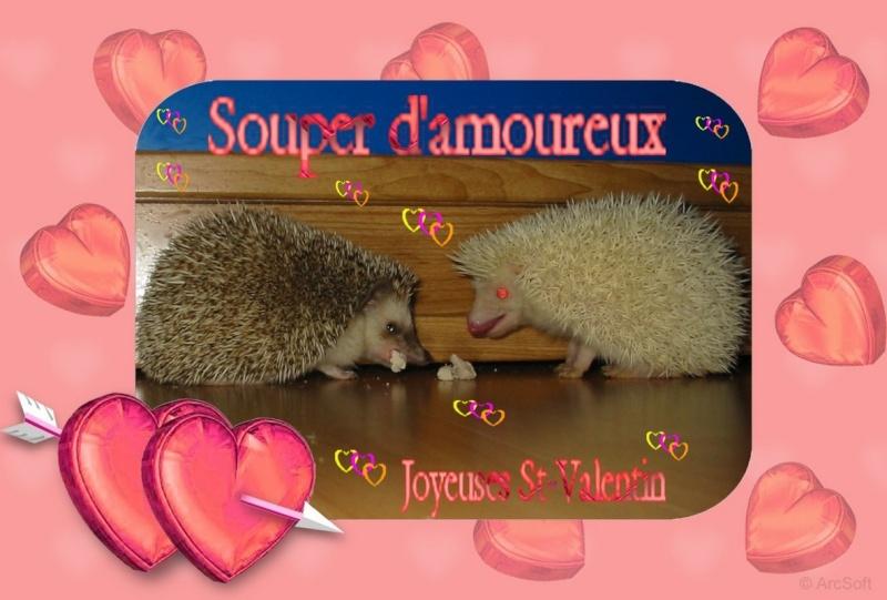 Bonne fête des amoureux!!! Valent10