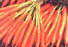 فوائد الخضروات و الفواكه التجميلية Carott10