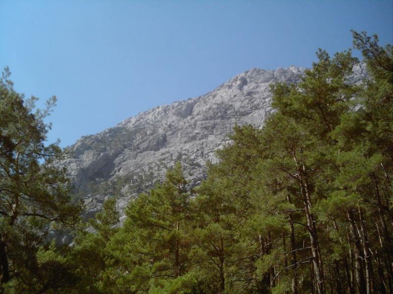 Paysages de Crete cet été Dsci0018