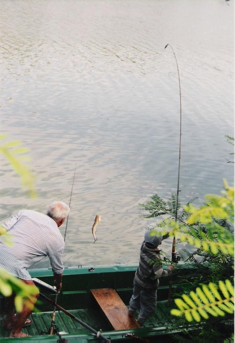 les  poissons de petit Thom le fiston Numeri15