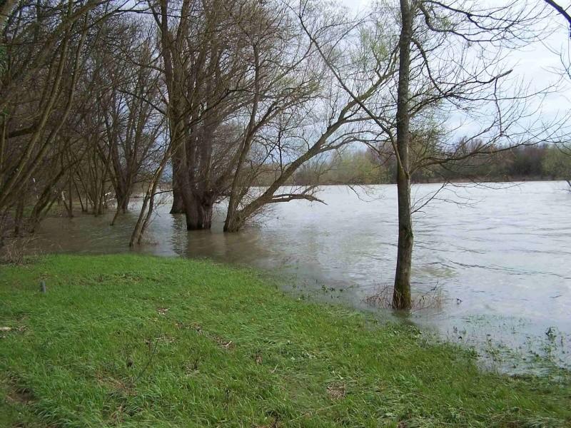 Le Rhône en crue! 100_1118