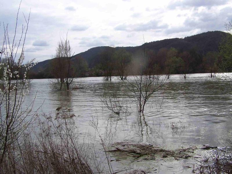 Le Rhône en crue! 100_1119