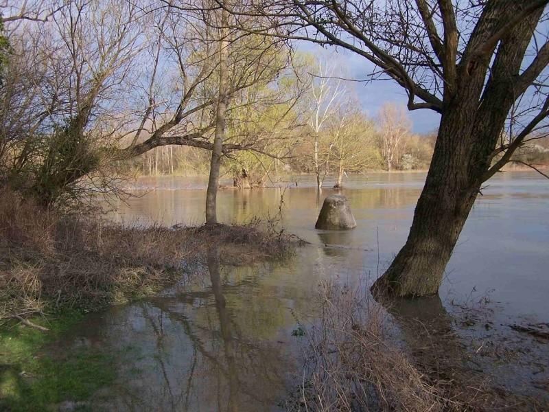 Le Rhône en crue! 100_1212