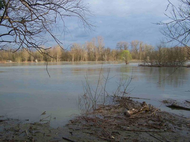 Le Rhône en crue! 100_1213