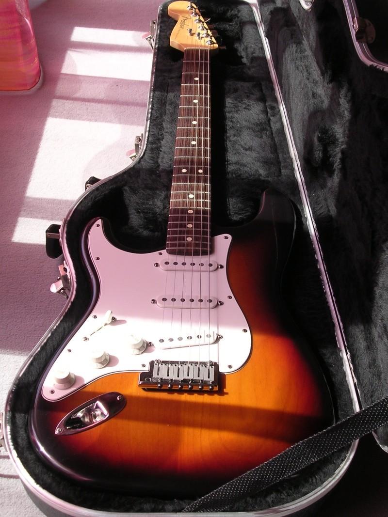 pour ceux qui ont la guitare qui les démange... - Page 6 Dscn1910