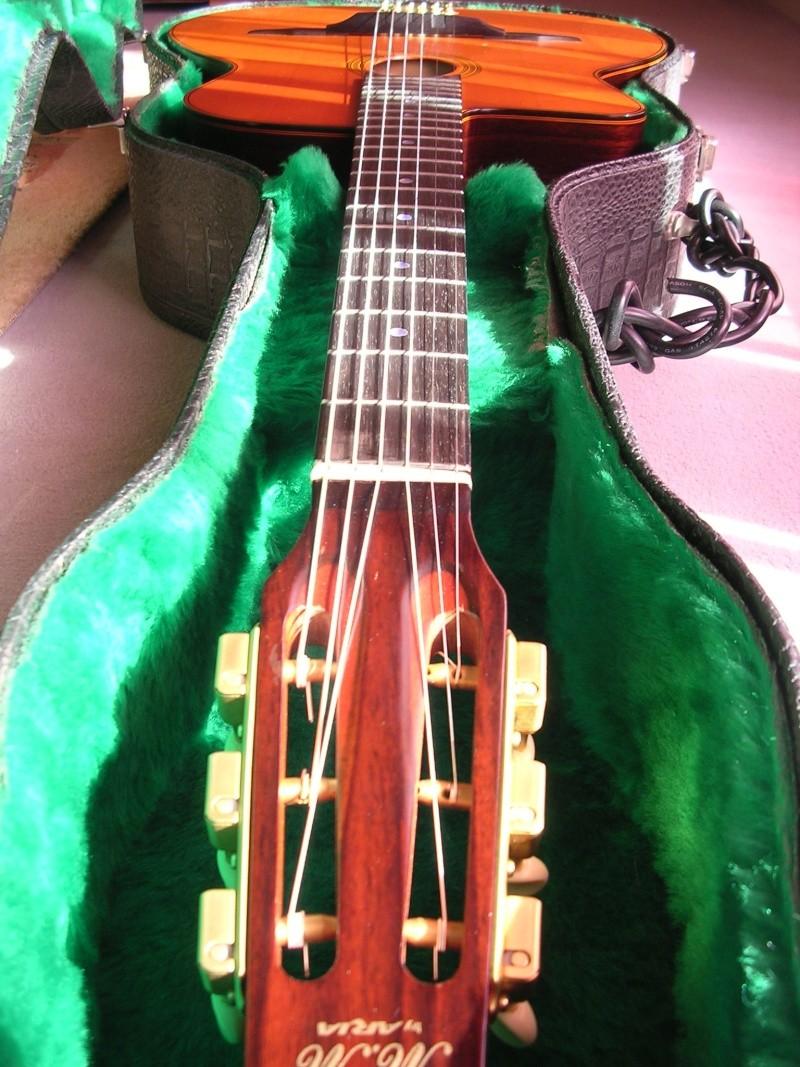 pour ceux qui ont la guitare qui les démange... - Page 6 Dscn1911
