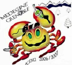 PCEM2 grenoble