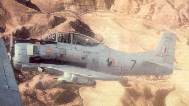 Guerre d'Algérie T-2810