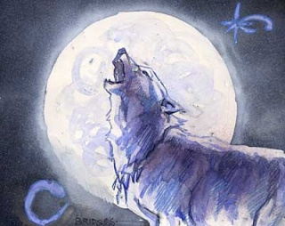 [werewolf : wildwest ] ireland departure PANDORE Wolf_o10