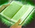 Les musulmans hollandais doivent dechirer la moitie du coran Coran10