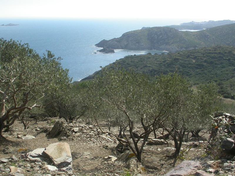 Perpignan- Cap Creus 200 km Dscn1015