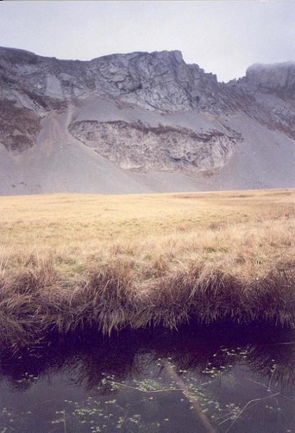 Alpes chéries. Coldes10