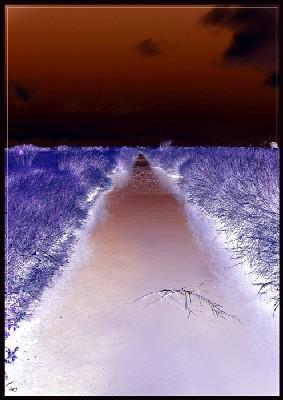 Le sentier dans Mes mots sur les photos de Silence vacanc12