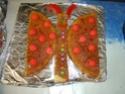 papillon 2_ans_11
