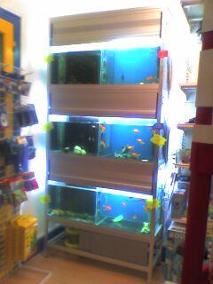 vends batterie aquarium