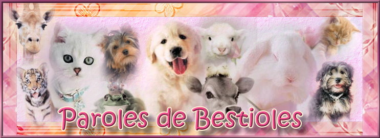 Paroles de Bestioles