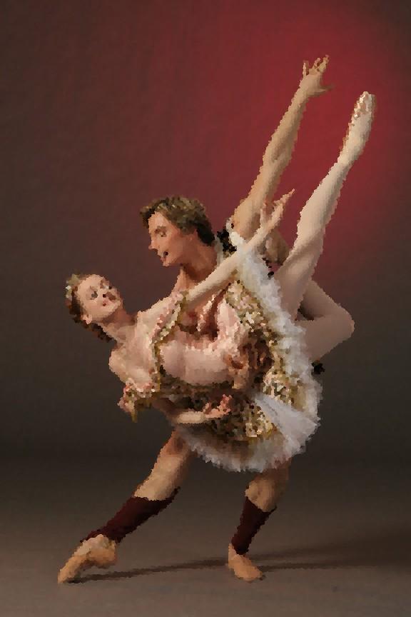 Tutus - Page 2 Dansec15