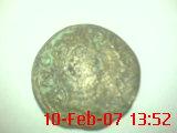 Semis de Cartagonova (por Augusto) Dsc00010