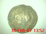 Semis de Cartagonova (por Augusto) Dsc00011