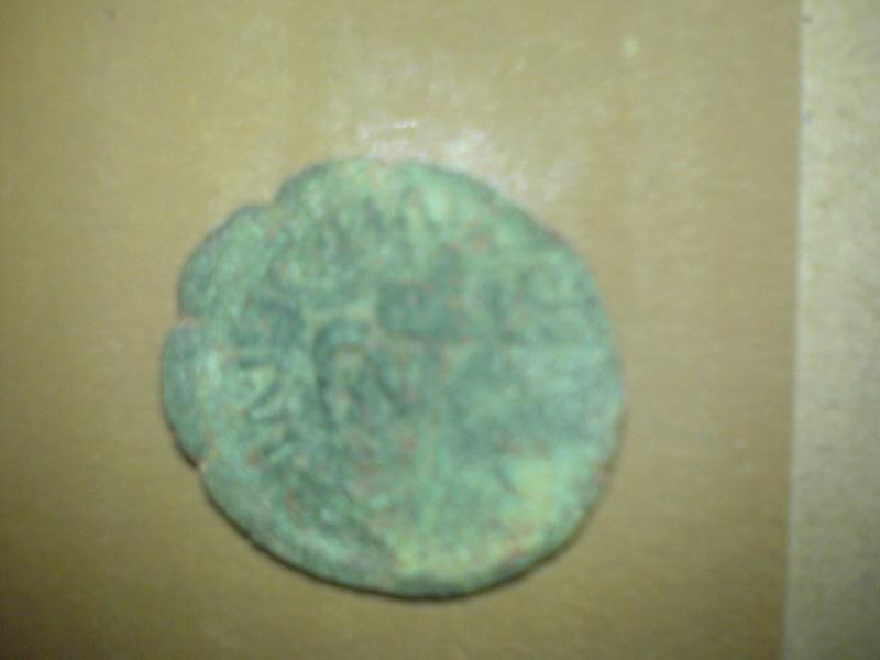 Semis de Cartagonova (por Augusto) Dsc00111