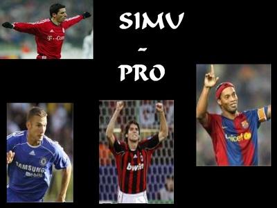 Pro Simu