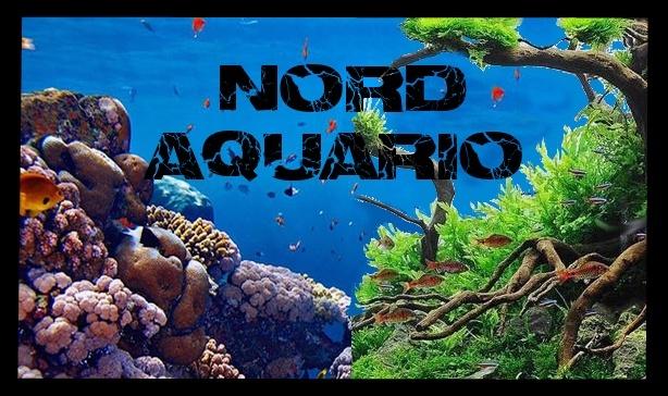 Nord aquario