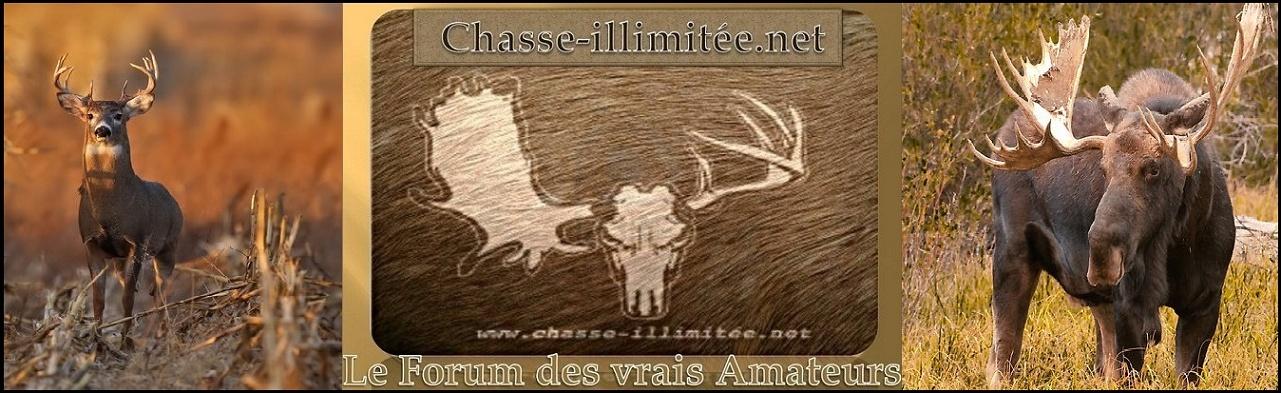 Chasse-illimitée.net
