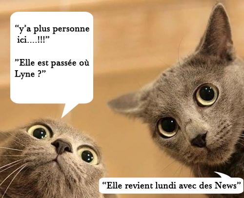 http://i11.servimg.com/u/f11/12/56/15/37/tumblr11.jpg