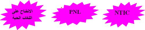 الانفتاح على اللغات الحية  PNL  NTIC