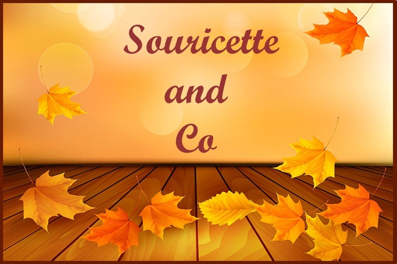 Souricette and Co