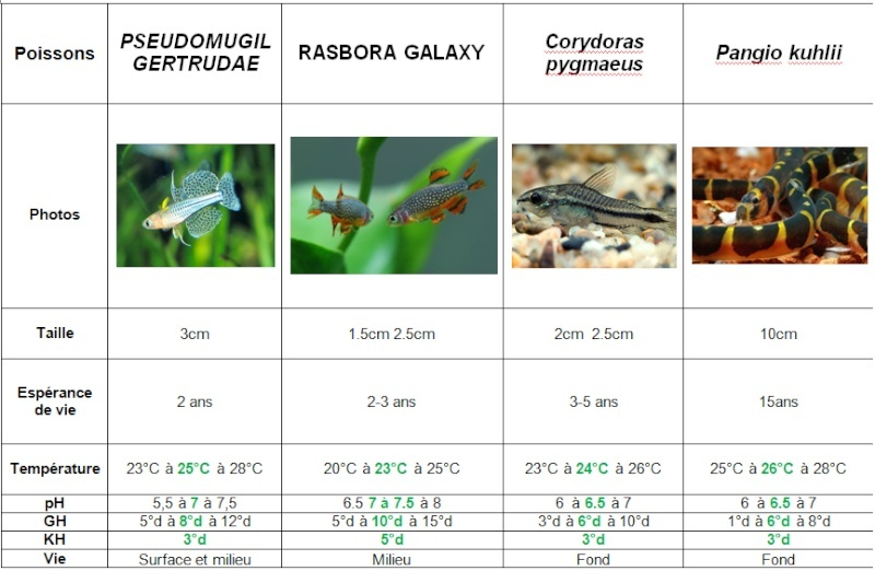 Mon nano aquarium 60l for Poisson aquarium 60l