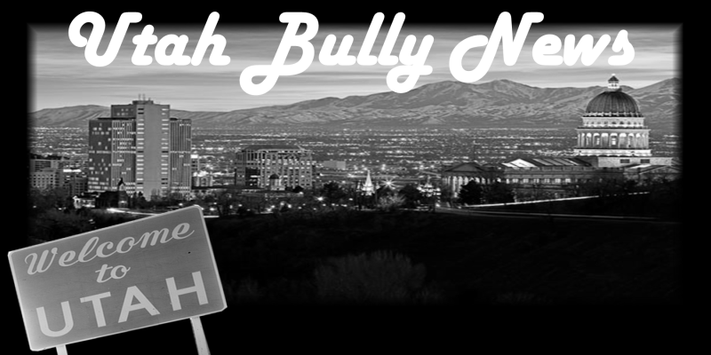 801bullynews
