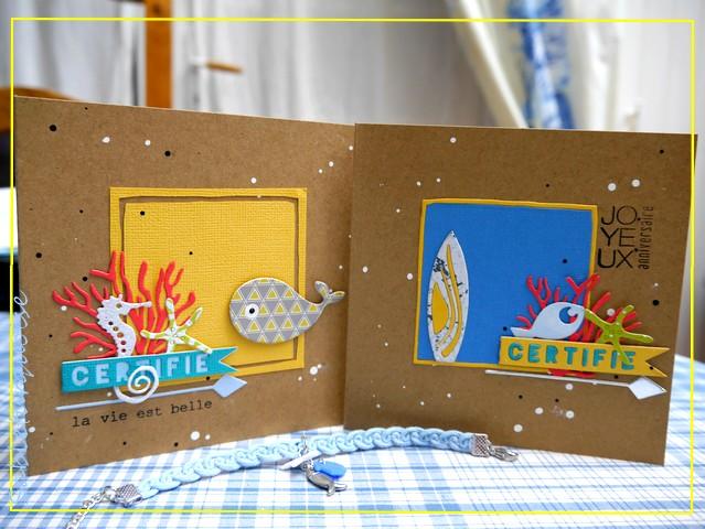 Passion Cartes Créatives#499 !