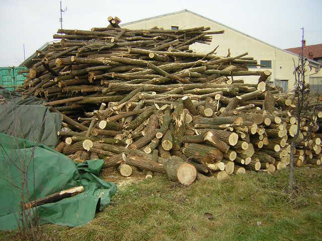 Prezzi legna da ardere pagina 9 for Legna da ardere prezzi