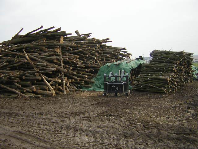 Prezzi legna da ardere pagina 9 for Legna da ardere brianza