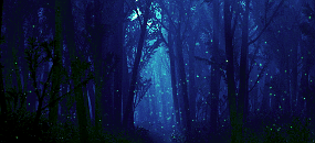 Старый лес - мистическое место