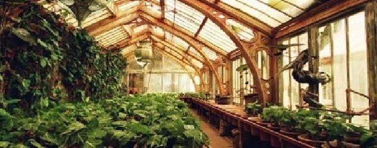 Estufa de herboligia - Estufa de jardin ...
