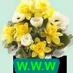 http://jardigigi.forumgratuit.be