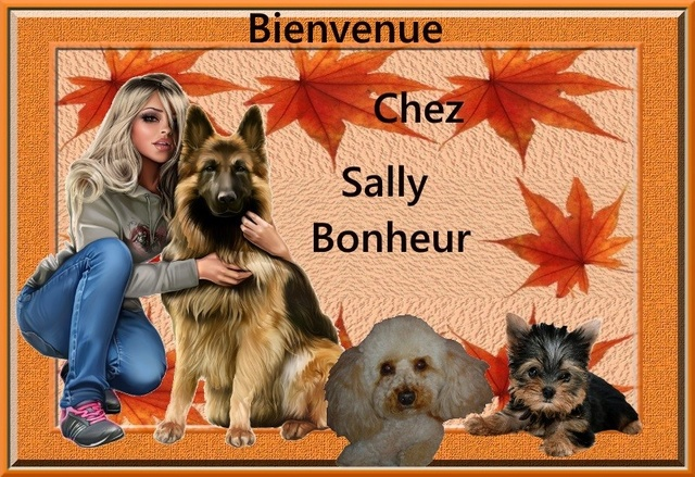SALLY   BONHEUR