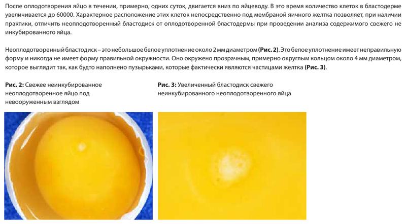 image177.png
