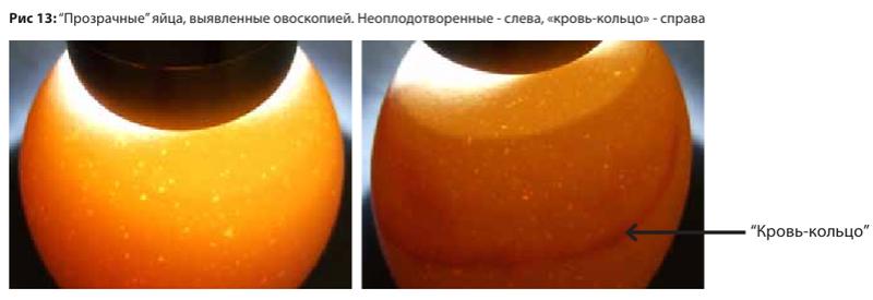 image182.png