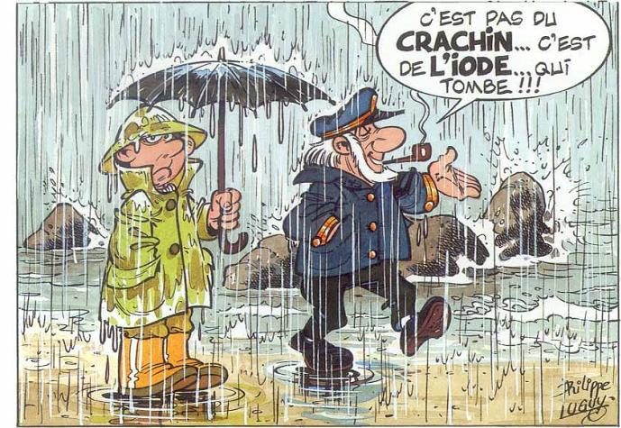 crachi11.jpg
