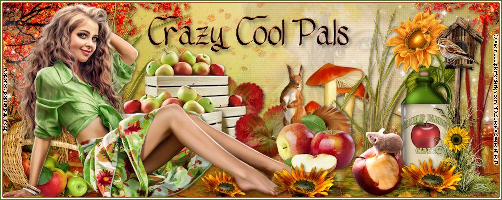 Crazy Cool Pals