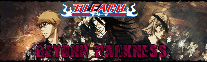 Bleach Beyond Darkness