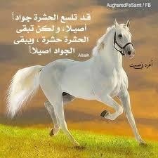 منتدى  الباحث عزالدين بن عبد الله